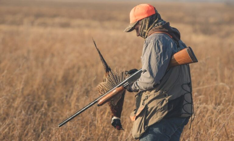 Shotgun For Pheasant Hunting